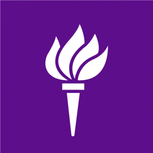 New York University Torch