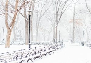 Winter in NYC Photo by Jack Cohen on Unsplash